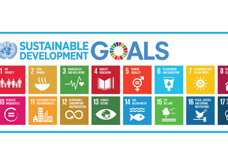 Are you interested in Sustainable development and Social Entrepreneurship?