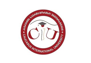 Vacancy for Supervisor of Doctoral Educational Program at Caucasus International University