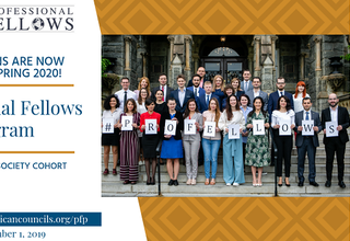 Call for applications for the Spring 2020 Professional Fellows Program - Governance & Society Cohort