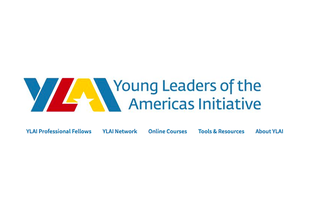 Call for applications for the YLAI Professional Fellows Program